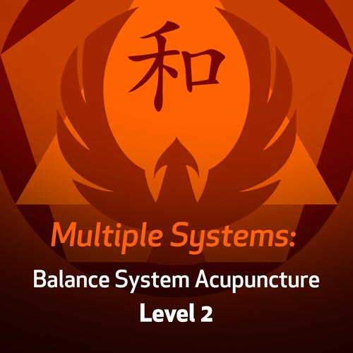 Multiple Systems: Balance System Acupuncture - Level 2