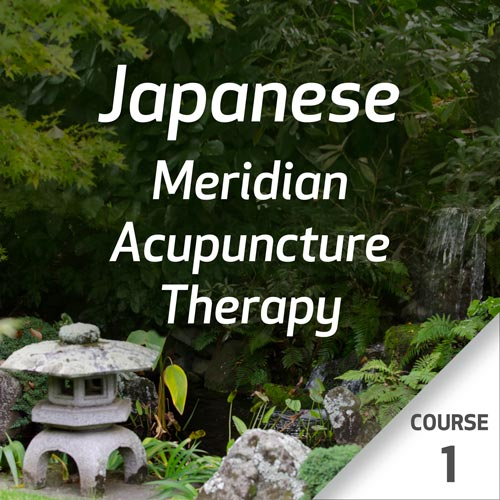 Japanese Meridian Acupuncture Therapy - Course 1