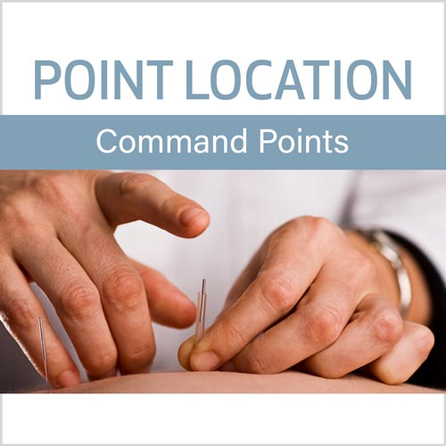 Point Location Series:  Command Points