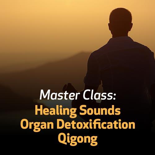 Master Class: Healing Sounds Organ Detoxification Qigong
