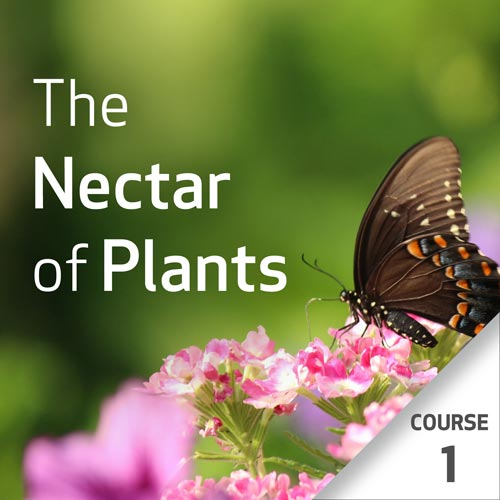 The Nectar of Plants: Essential Oils and Chinese Medicine Series - Course 1